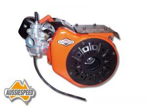 briggs-local-206-kart-engine